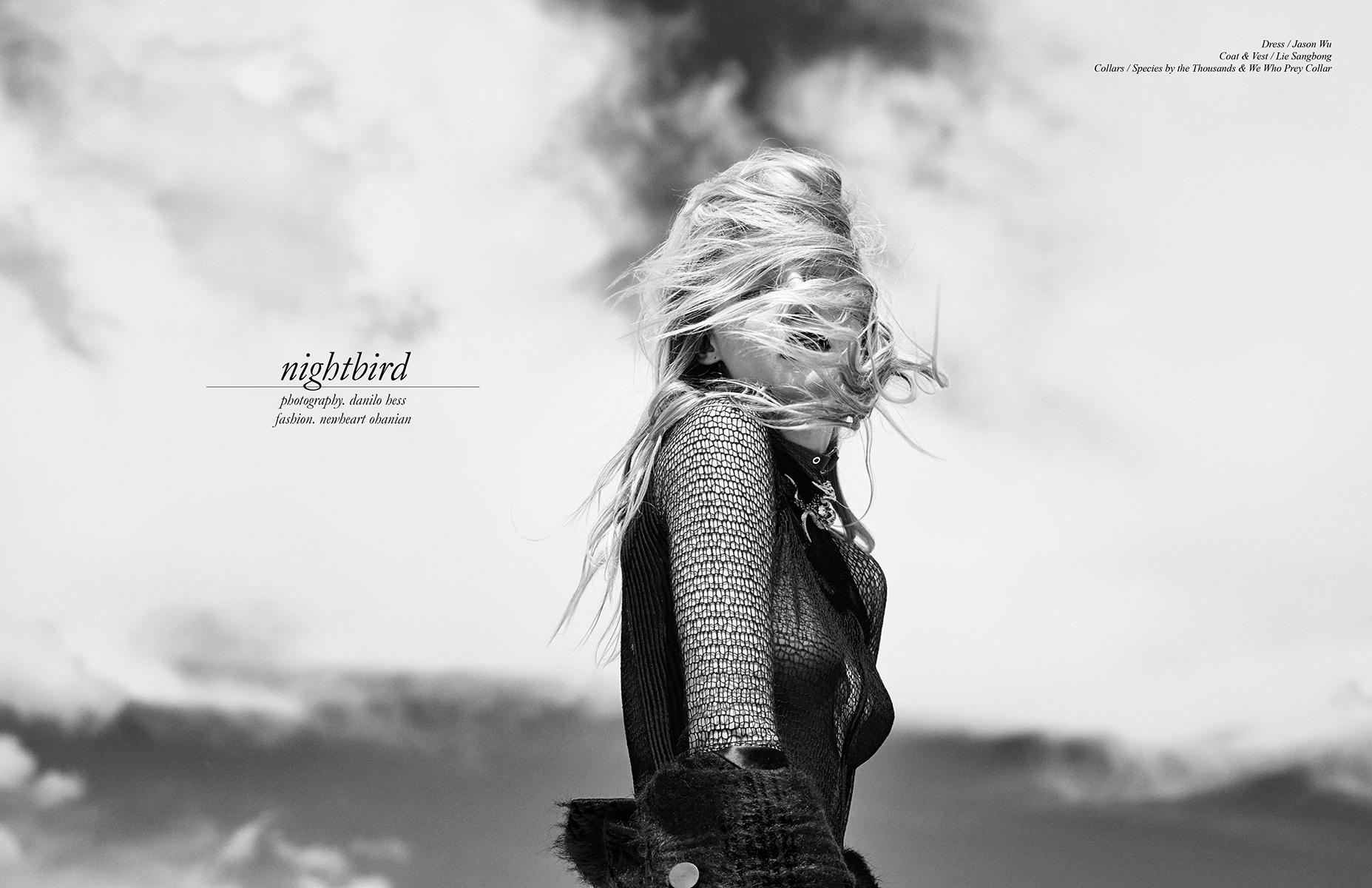 Schon_Magazine_Nightbird-1